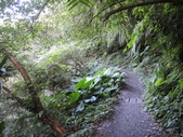 『 礁溪。林美石磐步道』健行森呼吸:DSCN6679.JPG