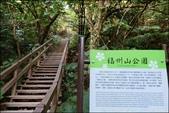 『 台北大安。富陽自然生態公園&福州山公園 』輕鬆健行即登頂。欣賞台北101風景的觀景平台: