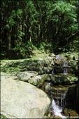 『 三峽。熊空茶園 』一座茶園想表達陽光、尋茶、森呼吸的概念:IMG_6267.JPG