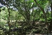 『 三峽。熊空茶園 』一座茶園想表達陽光、尋茶、森呼吸的概念:IMG_6258.JPG