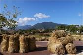 『 池上。池上鄉農會碾米加工廠 』米之鄉。池上買伴手禮必去的觀光工廠: