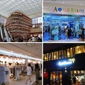 『 首爾。COEX MALL&江南地下街&橘村炸雞 』蝦&花的首爾購物之旅DAY 3:相簿封面