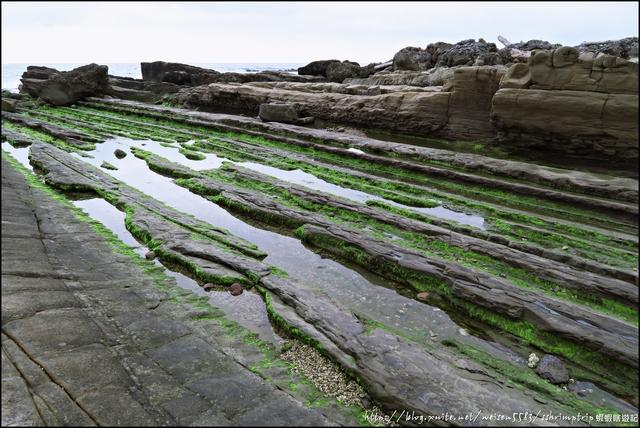 『 台東。小野柳 』東海岸最多奇岩怪石的知名風景區: