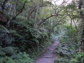 『 礁溪。林美石磐步道』健行森呼吸:DSCN6732.JPG