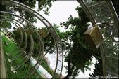『 桃園。南崁溪自行車道&虎頭山環保公園 』水岸單車遊&上山吹風看風景:IMG_8169.JPG