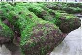 『 石門。老梅石槽 』攝影家必來取景的風景區PART II:IMG_6908.JPG