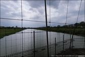 『 宜蘭。慶和橋津梅棧道 』廢墟風的空中長廊。宜蘭新誕生的美拍打卡熱點: