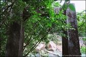 『 瑞芳。侯硐 』貓與礦坑PART II:IMG_8600.JPG