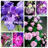 美呆了!!:紫色花卉.jpg