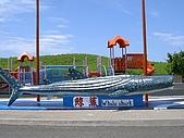 澎湖之旅─海生館:0009好大的鯨鯊