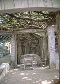 澎湖之旅─通樑古榕樹:0013兩旁還放置一些木