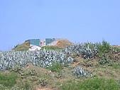 澎湖之旅─虎井嶼:020在對面的山頭上有