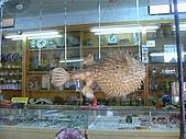 澎湖之旅─通樑古榕樹:0017藝品店幾乎都有這