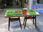 澎湖之旅─通樑古榕樹:0019到處都有賣新鮮的