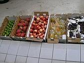 澎湖之旅─通樑古榕樹:0037新鮮水果