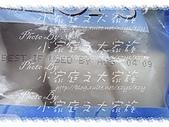 costco海鮮-KS生干貝A級:KS生干貝A級6.jpg
