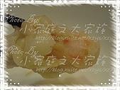 costco簡易料理-CP鮮蝦雲吞:CP鮮蝦雲吞12.jpg