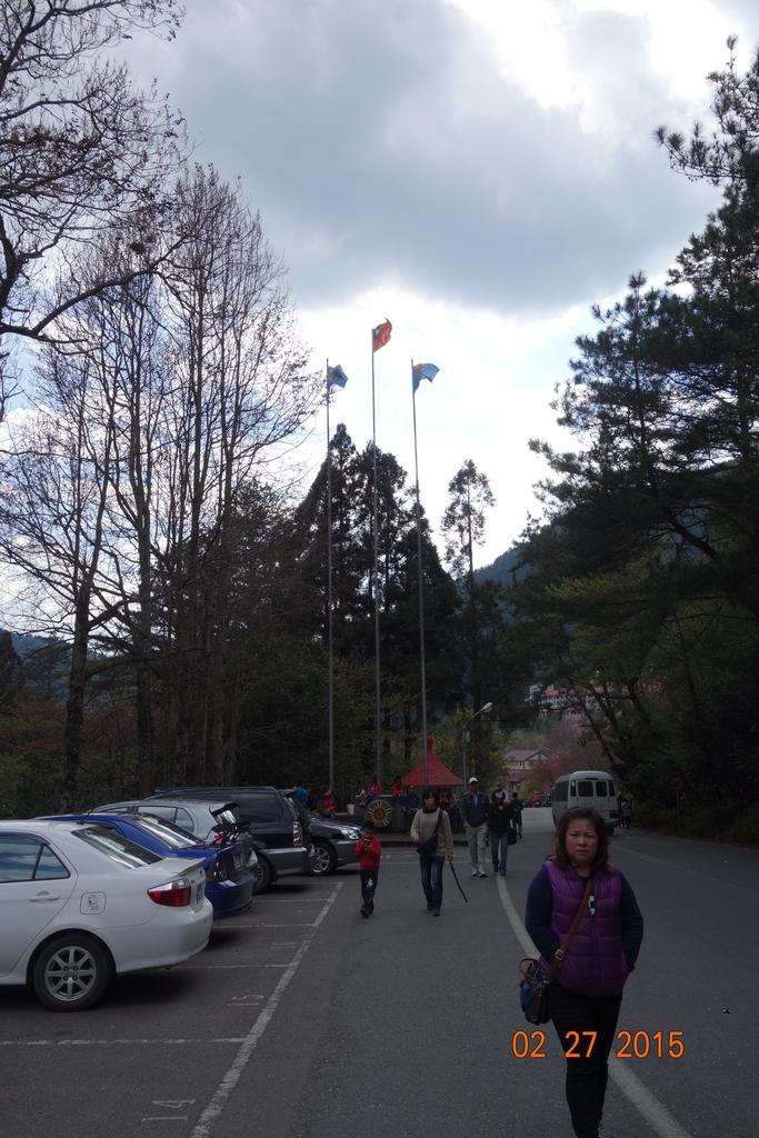 20150227梨山:DSC09385.JPG