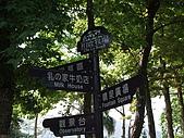 台東的美(09'3/22~3/24):照片 120.jpg
