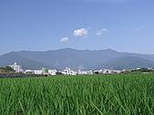 台東的美(09'3/22~3/24):照片 085.jpg