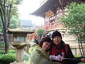上蘇杭之旅(11/15~19 09'):DSC02426.JPG
